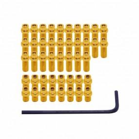 Bolt pentru Pedale DMR Terror Pins 10mm 20pcs